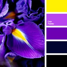 A complementary combination of shades of violet and yellow. This color scheme is well-suited for carnival costumes, evening or cocktail dresses. This color solution can be used for decoration of party premises.