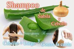 Shampoo de Sabila y Cebolla Evita la caída  y Cabello +largo/DIY - ONION...