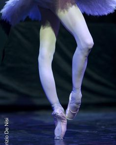 Image may contain: one or more people and text Dancers Feet, Ballet Feet, Dancers Body, Ballet Dancers, Ballet Images, Ballet Pictures, Ballet Photos, Dance Photos, Ballerina Legs
