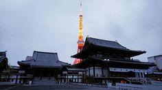 増上寺と東京タワー Zojoji and Tokyo Tower #東京#浜松町#増上寺 #東京タワー #夜景 #Tokyo#Hamamatsucho#Zojoji#Temple#TokyoTower#Nightview (by minato716)