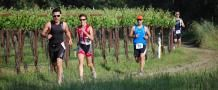 Honeymoon idea for avid runners - heading to Cali and join their Run Wine Country event. Not only can you keep up your love of running with your partner but you can also take in the romantic fun of visiting wineries