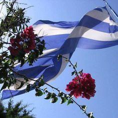 Santorini House, Greek Beauty, Parthenon, Homeland, Island, Outdoor Decor, Instagram Posts, Beautiful, Home Decor