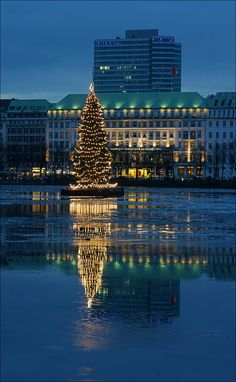 Lake Binnenalster in Hamburg with a the floating christmas tree and backdrop of the Four Seasons Hotel
