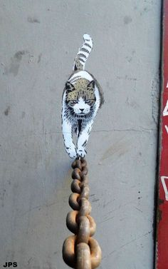 The Catwalk - British street artist JPS shows this cat's graceful balance on a wall in Barcelona, Spain.