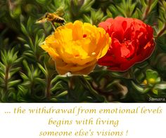 .. the withdrawal from #emotional levels begins with living someone else's #visions !