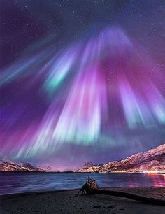 35 Fascinating Photos of Nature The amazing Northern Lights, officially known in the Northern hemisphere as Aurora Borelias, are natural phenomena that features amazing colored light All Nature, Science And Nature, Amazing Nature, Norway Nature, Amazing Grace, Cool Pictures, Cool Photos, Beautiful Pictures, Travel Pictures