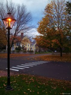 I love the feel of this picture, with the pretty leaves and the great lantern, and I love that house! Wish I was taking a walk there right now.