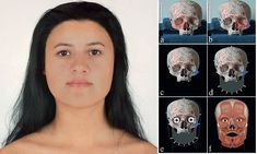 Meet 'Ava' the dark haired, dark skinned second-generation immigrant from years ago: DNA reveals family secrets of girl who died in Scotland Ancient Egyptian Art, Ancient Aliens, Ancient History, European History, Ancient Greece, American History, Ancient Mysteries, Ancient Artifacts, Forensic Facial Reconstruction