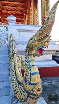 Il est sympa ce dragon aussi !  D'autres photos :  #followme #thierrydollon #photodujour #Laos #instatravel #photocouleur #voyage #picoftheday #travel #voyage #friends #evasion #decouvertes #landscapes #paysage #explorer #aventure #traveler #neverstopexploring #travelawesome #natureaddict #awesomeearth #exploretocreate #beautifulplaces #bestplacetogo #wanderlust #outplanetdaily
