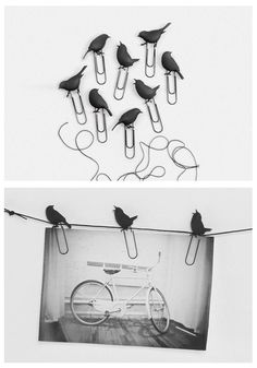 Birds on a wire photo clips