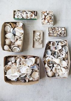 """secret_charm"" - summer 2015 mood #sea #sand #seashell"