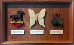 Looking Glass Insects Taxidermy Set by *tursiart on deviantART