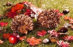 Crochet Patterns For Kids Instructions: Crochet sweet autumn hedgehog Crochet Projects, Sewing Projects, Hedgehog Animal, Pumpkin Spice Cupcakes, Woodland Party, Holiday Cocktails, Fall Diy, Crochet For Kids, Diy And Crafts