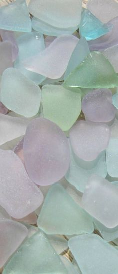 Free your Wild :: Ocean Bounty :: Shells :: Sea glass :: See more natural treasures @untamedorganica