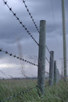 A stormy night along the fence line of a farmers field in Western Canada.
