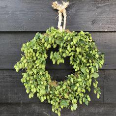 Hop krans doorsnede 42 cm 20 euro te verkrijgen op CreAnoeska.nl Euro, Floral Wreath, Wreaths, Home Decor, Floral Crown, Decoration Home, Door Wreaths, Room Decor, Deco Mesh Wreaths