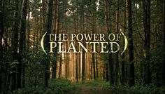 #planted #groundswellchurch Neon Signs, Graphics, How To Plan, Charts, Graphic Design