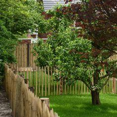 De 'achterste tuin is voorzien van oa fruitbomen,schapenhekjes en gras.