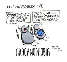 Animal problems