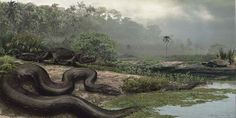 Titanoboa: Monster Snake opens January 26, 2013 at the Florida Museum of Natural History.  This artist's rendering shows how the 48-foot-long, 2,500-pound Titanoboa may have looked in its natural environment 60 million years ago.  Florida Museum illustration by Jason Bourque