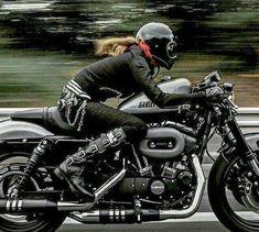 Harley Davidson Sportster Roadster Speeding Down The Parkway A True Golden Girl A Harley Davidson Fast Road Woman Harley Davidson Sportster 1200, Hd Sportster, Harley Davidson Motorcycles, Biker Chick, Biker Girl, Harley Roadster, Chicks On Bikes, Cafe Racer Girl, Motorcycle Art
