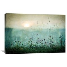Global Gallery 'Autumn Sunrise' by Asmund Kvaernstrom Graphic Art on Wrapped Canvas Size: Wall Prints, Canvas Art Prints, Canvas Wall Art, Poster Prints, Metal Wall Art, Wood Art, Tate Modern Art, Shops, Oeuvre D'art