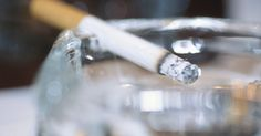 Por quanto tempo o tabaco permanece no corpo humano?. O tabaco vem de uma planta chamada Nicotinia tabacum, e a nicotina nela contida é altamente viciante. Na verdade, é a nicotina que pode ser encontrada no corpo humano e é ela o estimulante que compõe a fórmula de produtos à base de tabaco como cigarros, charutos e tabaco para mascar. A quantidade de nicotina em seu corpo depende de fatores como ...