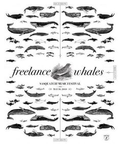 Adam Zacks - Freelance Whales