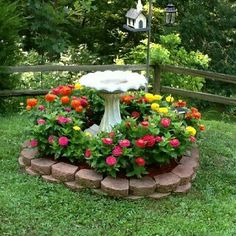 UNDER TREE Bird Bath Garden, Garden Art, Lawn And Garden, Flower Bed Borders, Flower Beds, Backyard Projects, Garden Projects, Zinnias, Zinnia Garden