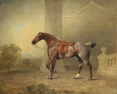 The Prince of Wales's Favourite Roan Hack by Benjamin Marshall
