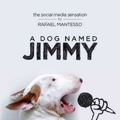 A DOG NAMED JIMMY -- 100 new and classic images of popular Instagram celebrity Jimmy Choo the Bull Terrier.