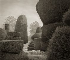 """Beth Dow - In the Garden : Passage, Levens Hall, 18.5x16"""" Platinum Palladium """"These recent photographs were taken in formal English and Italian gardens. The shape and mystery of these places are a natural draw (...). I am interested in garden history and historical concepts of paradise, and aim for pictures that have a meditative quality to reflect the spiritual urges that inspired the earliest gardens some 6000 years ago."""""""