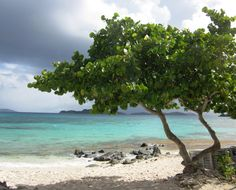Sapphire Beach, St. Thomas, United State Virgin Islands