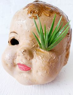 Baby head planter. aaaahhhh! my eye!!! holy hell i cant wait to make this.