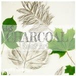 Make bold leaf art with CHARCOAL LEAF PICTURES. Charcoal is an exciting medium for kids to use to explore leaf shape and texture. An interesting nature craft for kids to enjoy in Fall or all year round. Leaf Crafts, Leaf Art, Nature Crafts, Leaf Shapes, Charcoal, Christmas Crafts, Crafts For Kids, Leaves, Texture