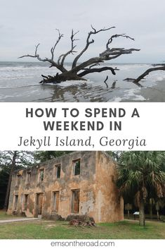 History, Beaches, and Seafood: Discover a Local's Favorite Things to Do in Jekyll Island, Georgia — Em's On The Road Places To Travel, Places To See, Travel Destinations, Bora Bora, Jekyll Island Georgia, Cumberland Island Georgia, St Simons Island Georgia, Jekyll Island Club Hotel, Jekyll Island Camping
