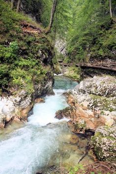 rapid on Sava river in Vintgar Gorge, Slovenia