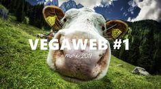 VEGAWEB (Véganie du web) Mai 2017. // Gladwood