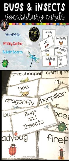 Bugs and Insects Vocabulary Word Cards - great for word walls, vocabulary boards, pocket chart activities, ESL, and writing centers.  * Ladybug * luna moth * grasshopper * fly  * stink bug  * butterfly * chrysalis * dragonfly * firefly * beetle   caterpillar * bee * ant * centipede #bugsandinsects #littlelearningcorner Butterfly Bulletin Board, Butterfly Chrysalis, Illustrated Words, Stink Bugs, Writing Centers, Number Words, Word Walls, Vocabulary Cards, Bugs And Insects