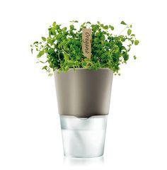 Eva Solo White Self Watering Flower/Herb Pot | Herbs, Indoor Herbs And  Flower