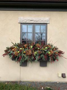 Window Box Plants, Window Box Flowers, Flower Boxes, Lush Garden, Garden Art, Meadow Garden, Container Plants, Container Gardening, Christmas Window Boxes