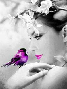 quenalbertini: A color splash Color Splash, Color Pop, Colour, Color Azul, Splash Photography, Color Photography, Purple Rain, Purple Bird, Pink Purple