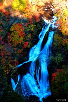 """:: www.frogview.com :> Witness the supernatural beauty of Japanese landscape & """"Autumn in Japan."""""""