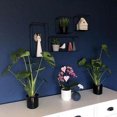 @froyafletta House, Garden, Home Decor, Garten, Decoration Home, Home, Room Decor, Lawn And Garden, Gardens