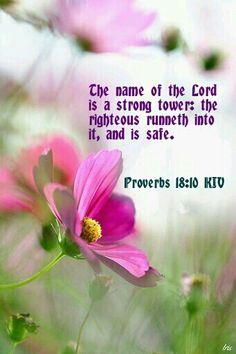 Proverbs 18:10 KJV