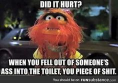 The Muppets Movie Quotes Worthless Piece Of Shit, Lol, Badass Quotes, Awesome Quotes, Twisted Humor, Work Humor, Work Funnies, Funny Jokes, Drunk Humor