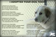 For everyone who has ever adopted a rescue or shelter pet! by Michelle http://halrescue.org/matt1.htm