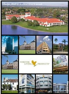 Just a few of the amazing Head Offices in Forever Living. Looking forward to visiting them all. Forever Living Aloe Vera, Forever Aloe, My Forever, Forever Company, Forever Living Business, Aloe Vera Skin Care, Forever Living Products, Old Building, Live Laugh Love