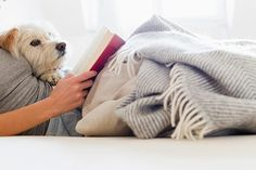 Hygge is all about feeling cosy and what could be cosier than a warm, fuzzy blanket? (Dog optional, but preferable.) MORE: 11 ways to make your life more hygge Sunday Scaries, Taurus Moon, Silly Dogs, Freezing Cold, Back To Work, Hygge, Daydream, Dog Training, Dog Cat