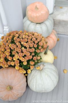 blue cinderella pumpkins We are officially in the fall season! Let me show you festive ways to decorate your porch using traditional and non-traditional colors. #fallporchdecor #falldecor #fallinspiration #cutefallporch Fall Home Decor, Autumn Home, Autumn Garden, Thanksgiving Decorations, Seasonal Decor, Autumn Decorations, House Decorations, Ab Ins Beet, Fall Inspiration